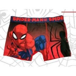 Boxer modal Spiderman