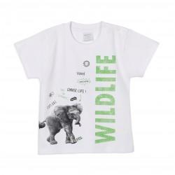 Remera elefante bebe Ruabel