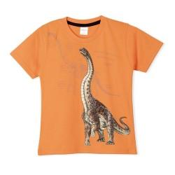 Remera dinosaurio nene Ruabel